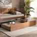 Baxton Studio Toveli Modern and Contemporary Ash Walnut Finished Twin Size Trundle Bed - MG-0015-Ash Walnut-Trundle