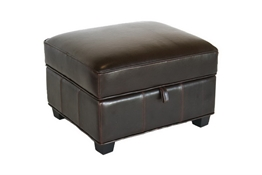 Baxton Studio Agustus Brown Leather Storage Ottoman Brown Bi-cast Leather Storage Ottoman wholesale, wholesale furniture, restaurant furniture, hotel furniture, commercial furniture