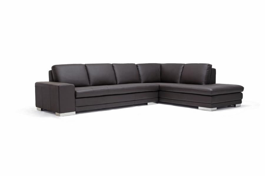 Callidora Dark Brown Leather-Leather Match Sofa Sectional