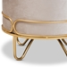 Baxton Studio Lucienne Glam and Luxe Beige Velvet Fabric Upholstered Gold Finished Metal Ottoman - FJ5A-017-Beige/Gold-Otto