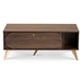 Baxton Studio Edel Mid-Century Modern Walnut Brown and Gold Finished Wood Coffee Table - LV12CFT12140WI-Columbia/Gold-CT