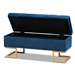 Baxton Studio Ellery Luxe and Glam Navy Blue Velvet Fabric Upholstered and Gold Finished Metal Storage Ottoman - WS-14115-Navy Blue Velvet/Gold-Otto