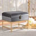 Baxton Studio Aliana Glam and Luxe Grey Velvet Fabric Upholstered and Gold Finished Metal Small Storage Ottoman - JY19B-051S-Grey Velvet/Gold-Otto